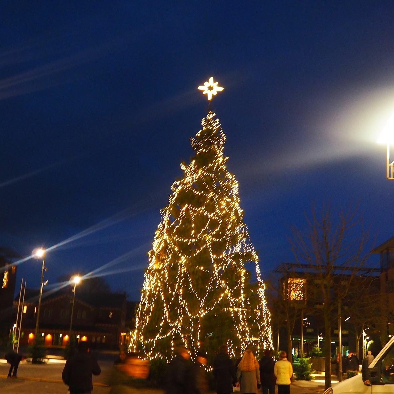 Billede af juletræet på Torvet