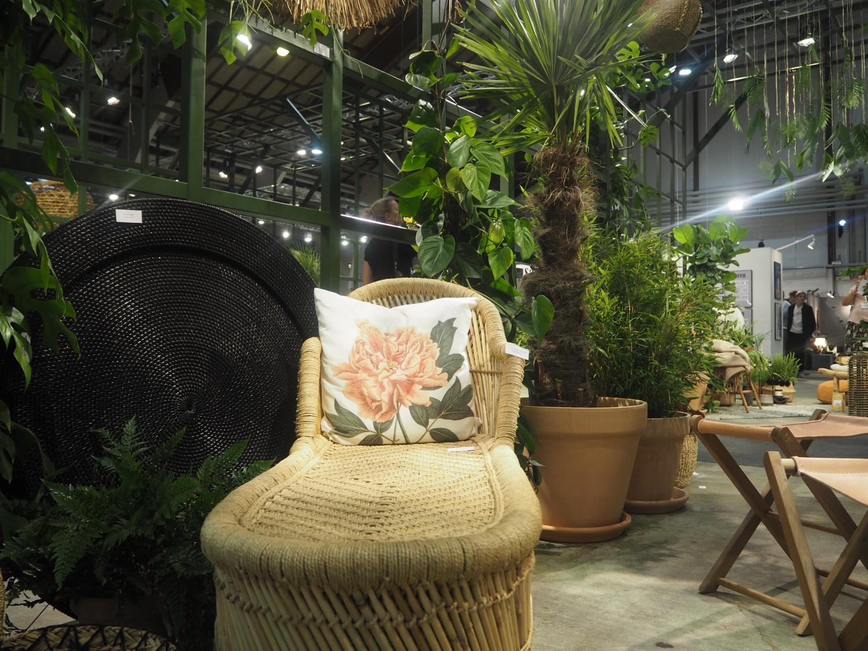stol og planter