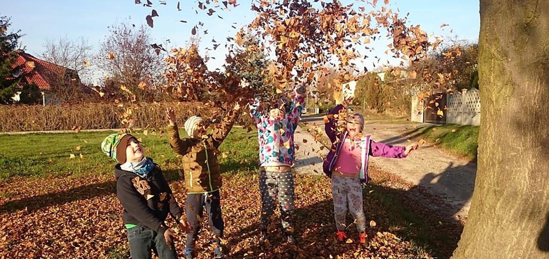 billeder af børn der leger med blade