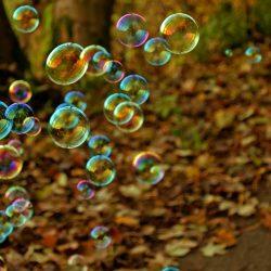 bobler i efterårsskov