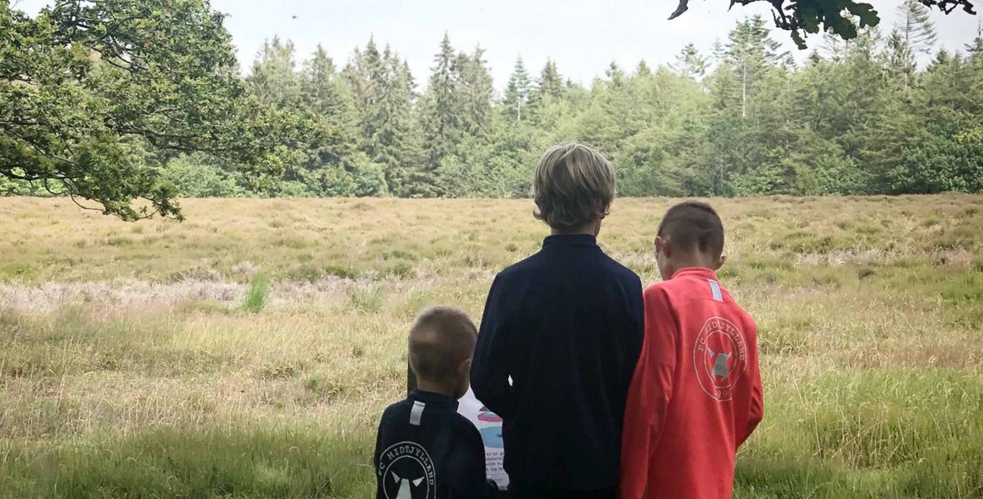 Dianas drenge i Løvbakkerne