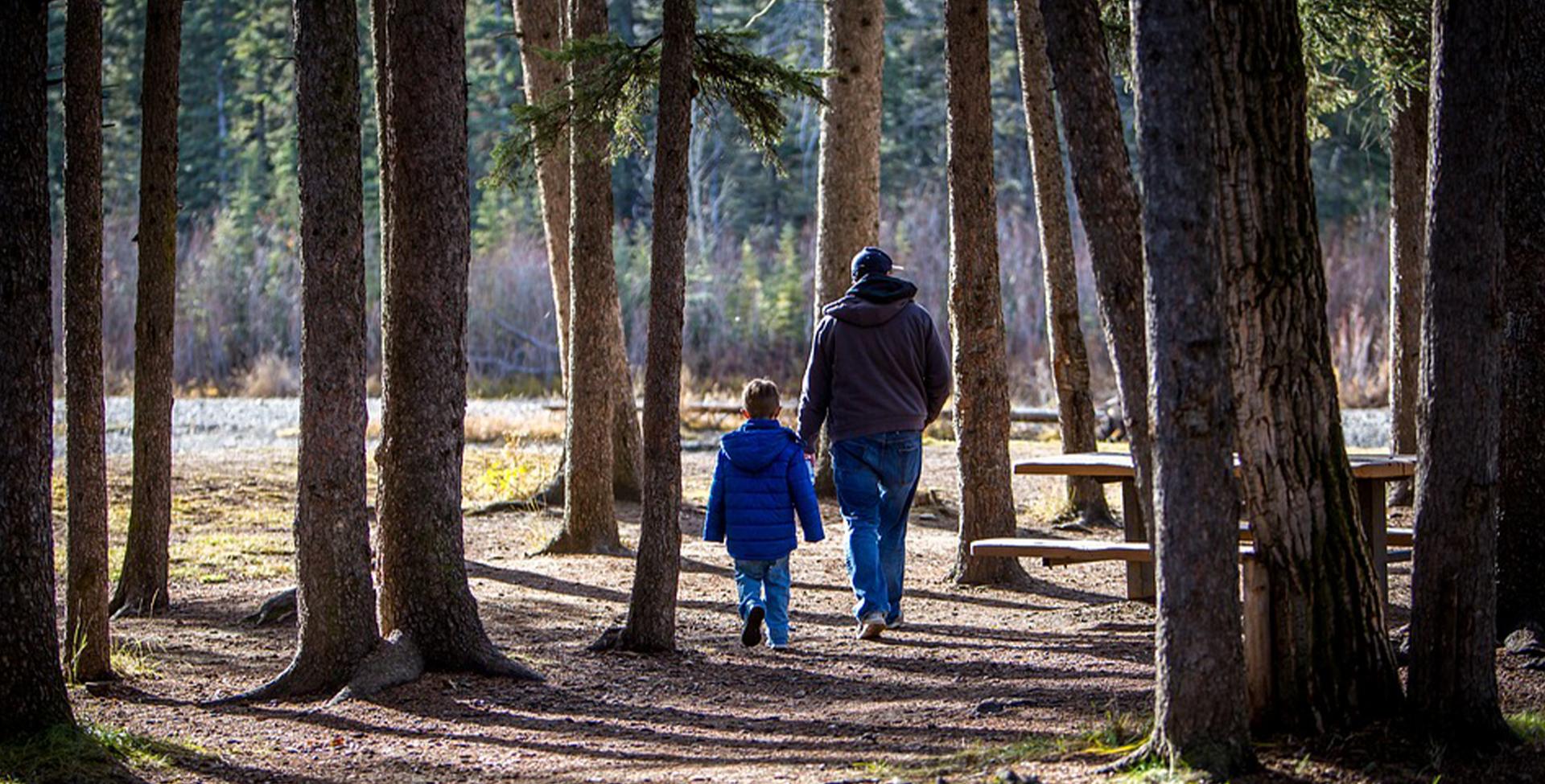 Illustration, far og søn i skov