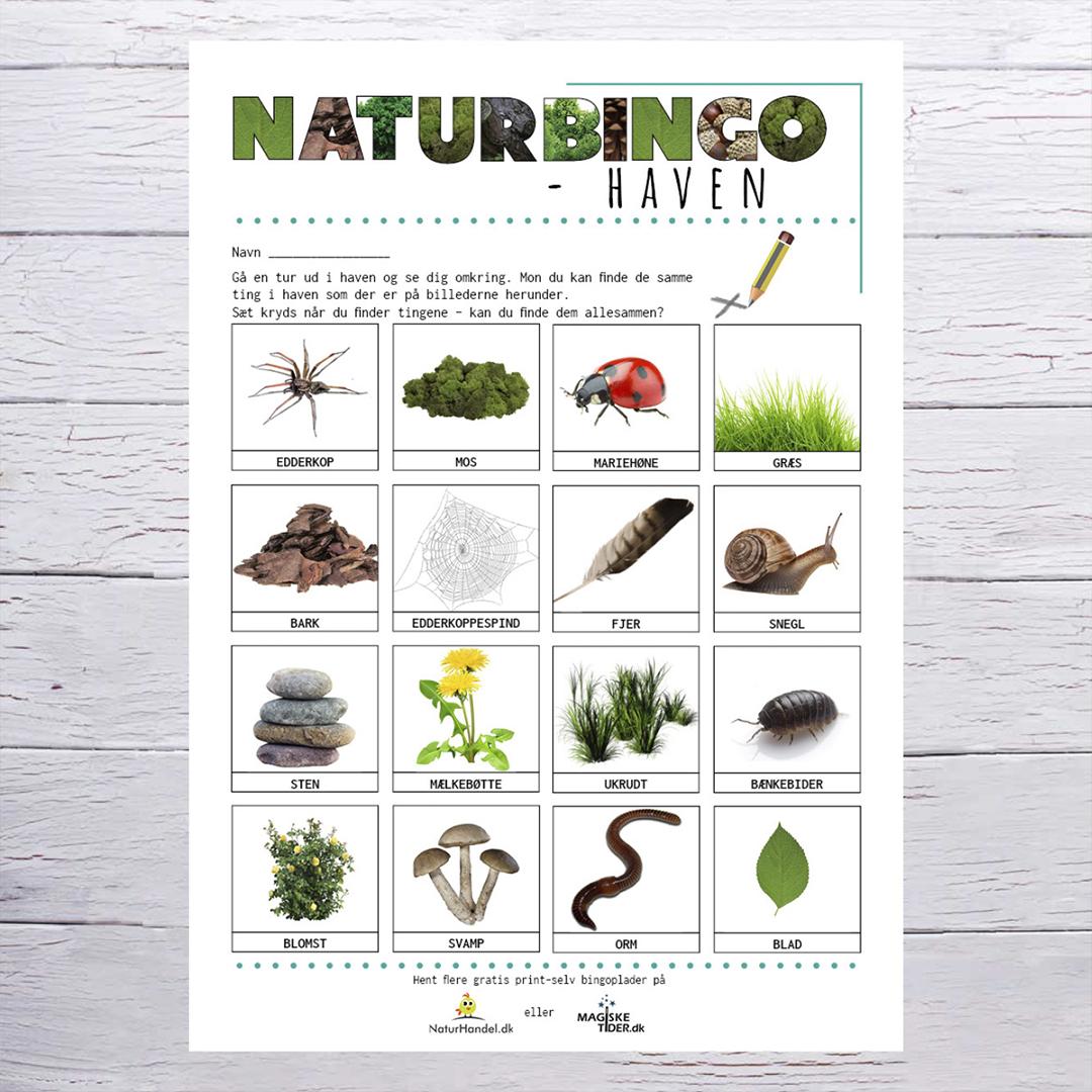 Naturbingo-plade