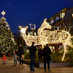 Juletræet og de lysende dådyr Eyde og Ella på Torvet i Herning 2016